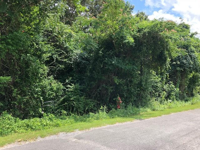 lot 69-72 Kings Hill Road, Spring City, Tennessee 37381, ,Lots And Land,For Sale,lot 69-72 Kings Hill Road,20184233