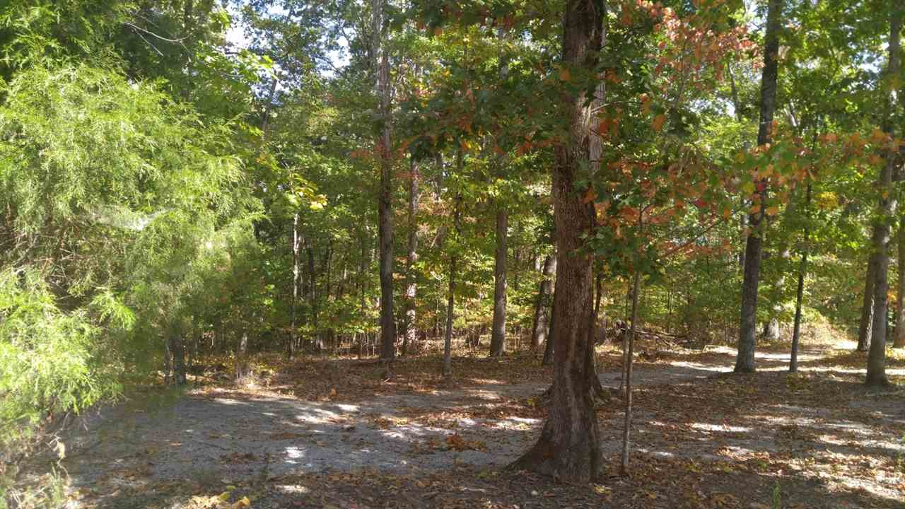 lots 209 & 2 Maple Drive, Spring City, Tennessee 37381, ,Lots And Land,For Sale,lots 209 & 2 Maple Drive,20166223