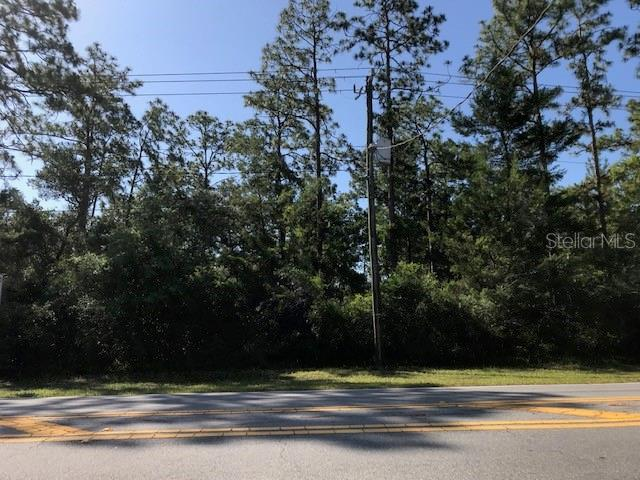 1407 COURTLAND BOULEVARD, DELTONA, Florida 32738, ,Lots And Land,For Sale,1407 COURTLAND BOULEVARD,V4913799