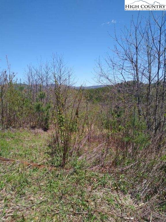 Tbd Laurel Fork Road, LAUREL SPRINGS, North Carolina 28644, ,Lots And Land,For Sale,Tbd Laurel Fork Road,221587