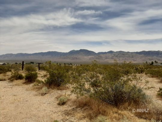 XXX Chandler, Littlefield, Arizona 86432, ,Lots And Land,For Sale,XXX Chandler,1203035