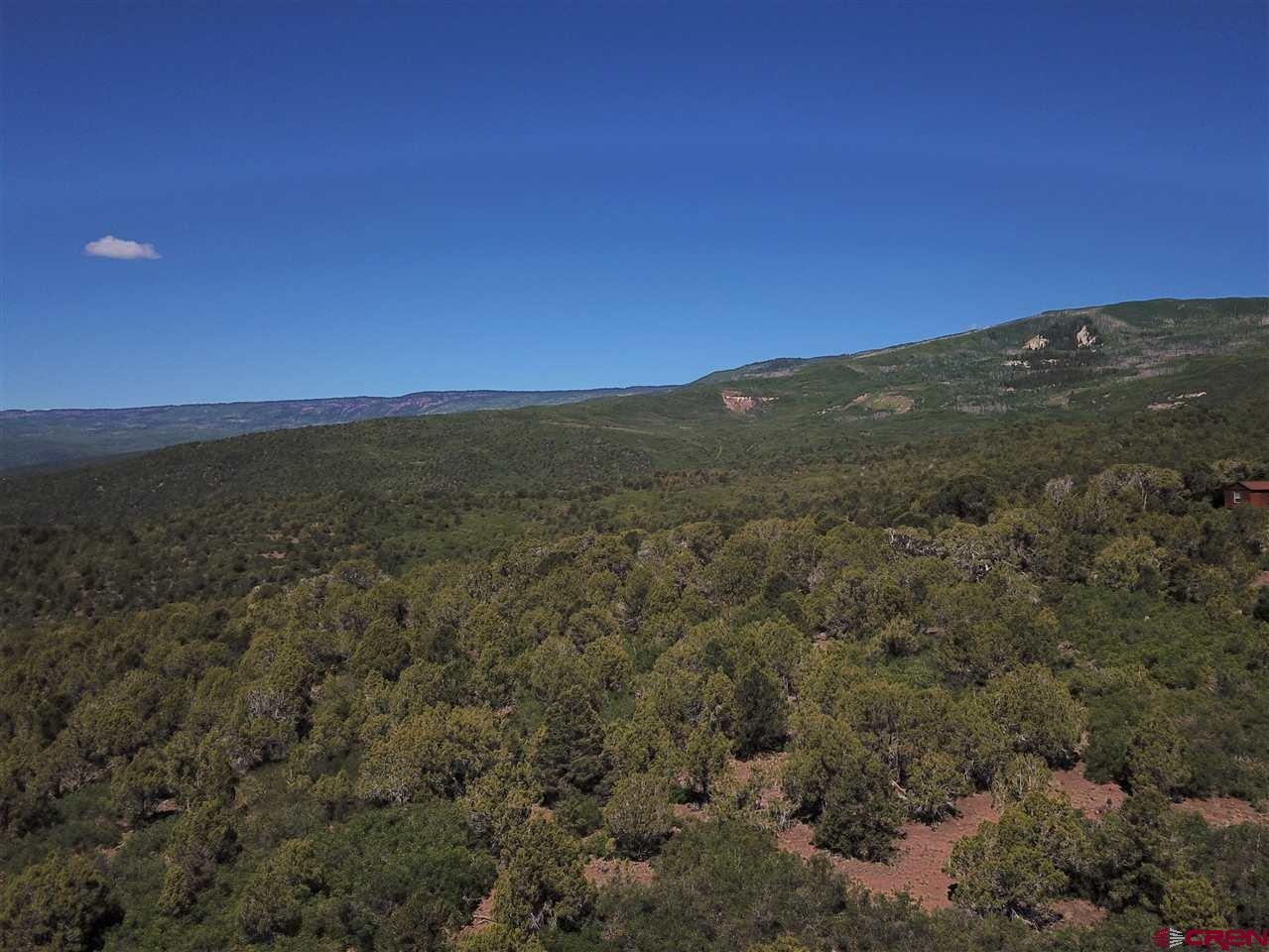 TBD 2225 Road, Cedaredge, Colorado 81413, ,Lots And Land,For Sale,TBD 2225 Road,770945