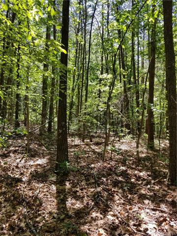 0 Chapel Hill Road, Goochland, Virginia 23063, ,Lots And Land,For Sale,0 Chapel Hill Road,2017329