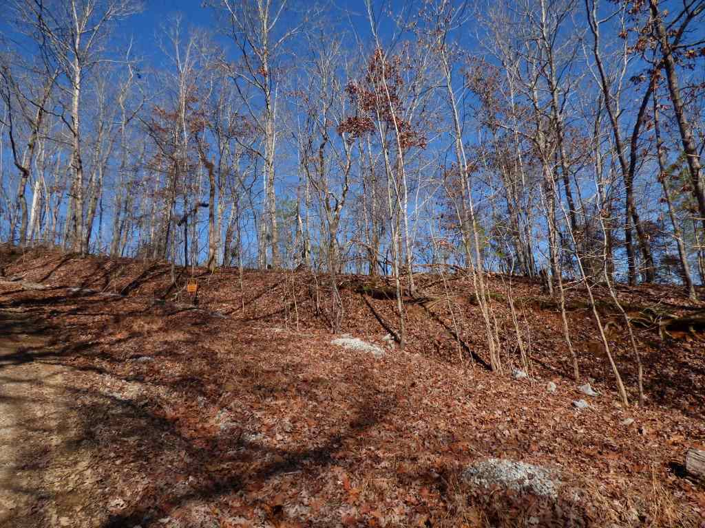 lot 492 & 49 Rockview Drive, Spring City, Tennessee 37381, ,Lots And Land,For Sale,lot 492 & 49 Rockview Drive,20205530