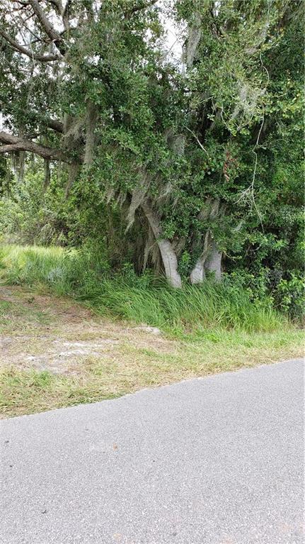 3120 CHEROKEE ROAD, Saint Cloud, Florida 34772, ,Lots And Land,For Sale,3120 CHEROKEE ROAD,S5035794