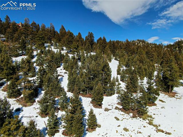 164 Palmer Trail, Manitou Springs, Colorado 80829, ,Lots And Land,For Sale,164 Palmer Trail,2105764