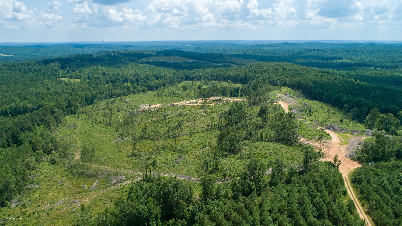 AL-253, Guin, Alabama 35563, ,Lots And Land,For Sale,AL-253,20-1281