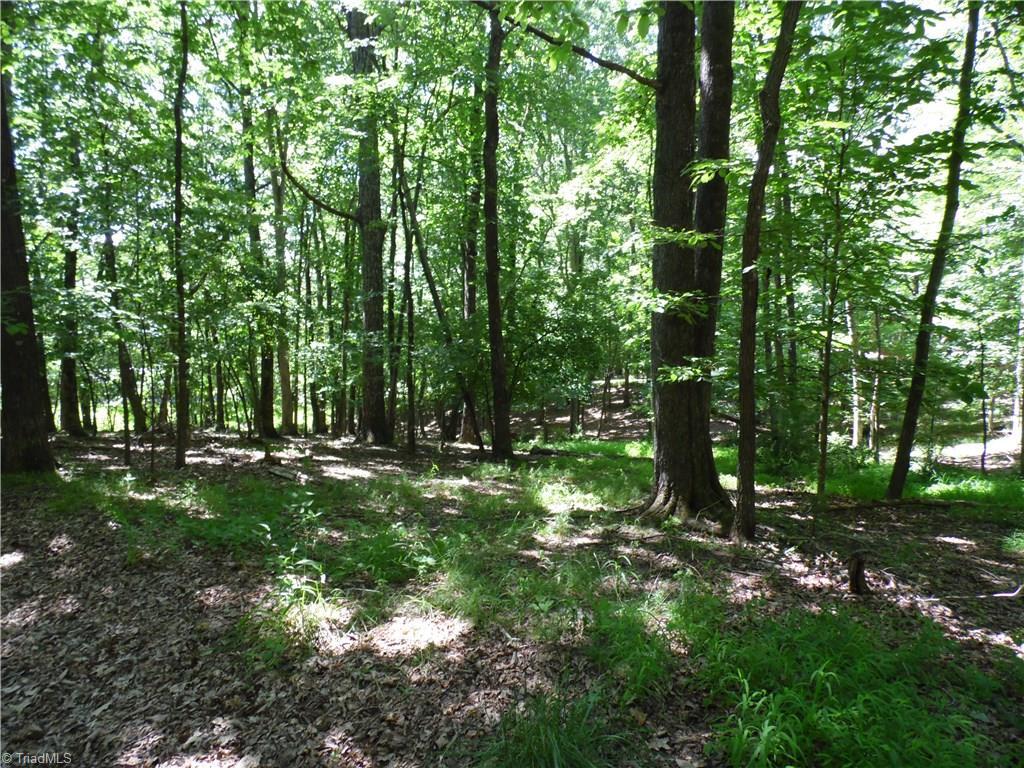 Tbd Hendrix Road, Sparta, North Carolina 28675, ,Lots And Land,For Sale,Tbd Hendrix Road,984892