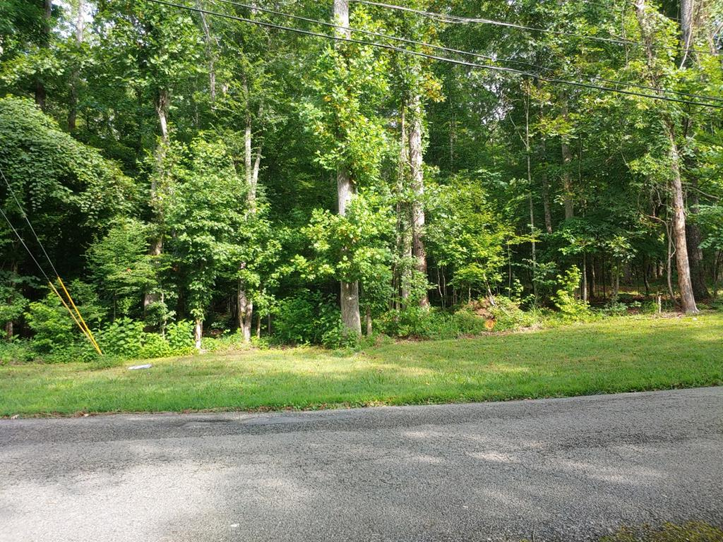 Lot 12 & 13 Apollo Drive, Spring City, Tennessee 37381, ,Lots And Land,For Sale,Lot 12 & 13 Apollo Drive,20206171