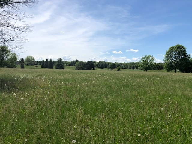 L67 Manistee Way, Verona, Wisconsin 53593, ,Lots And Land,For Sale,L67 Manistee Way,1889974