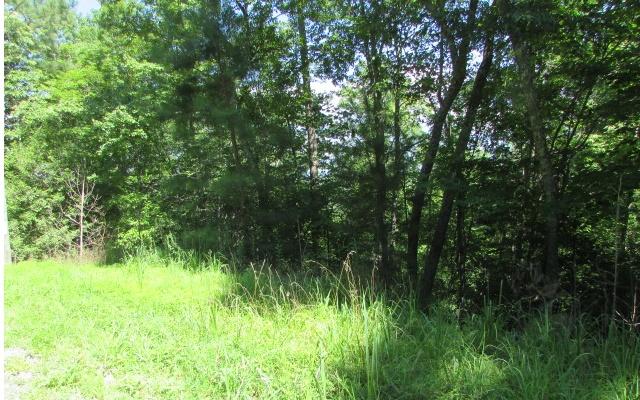 1198 LANCER, Ellijay, Georgia 30540, ,Lots And Land,For Sale,1198 LANCER,298781