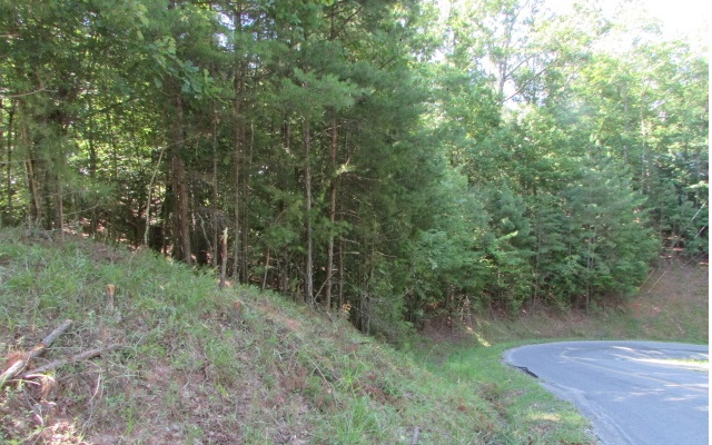 2086 PACER, Ellijay, Georgia 30540, ,Lots And Land,For Sale,2086 PACER,298780