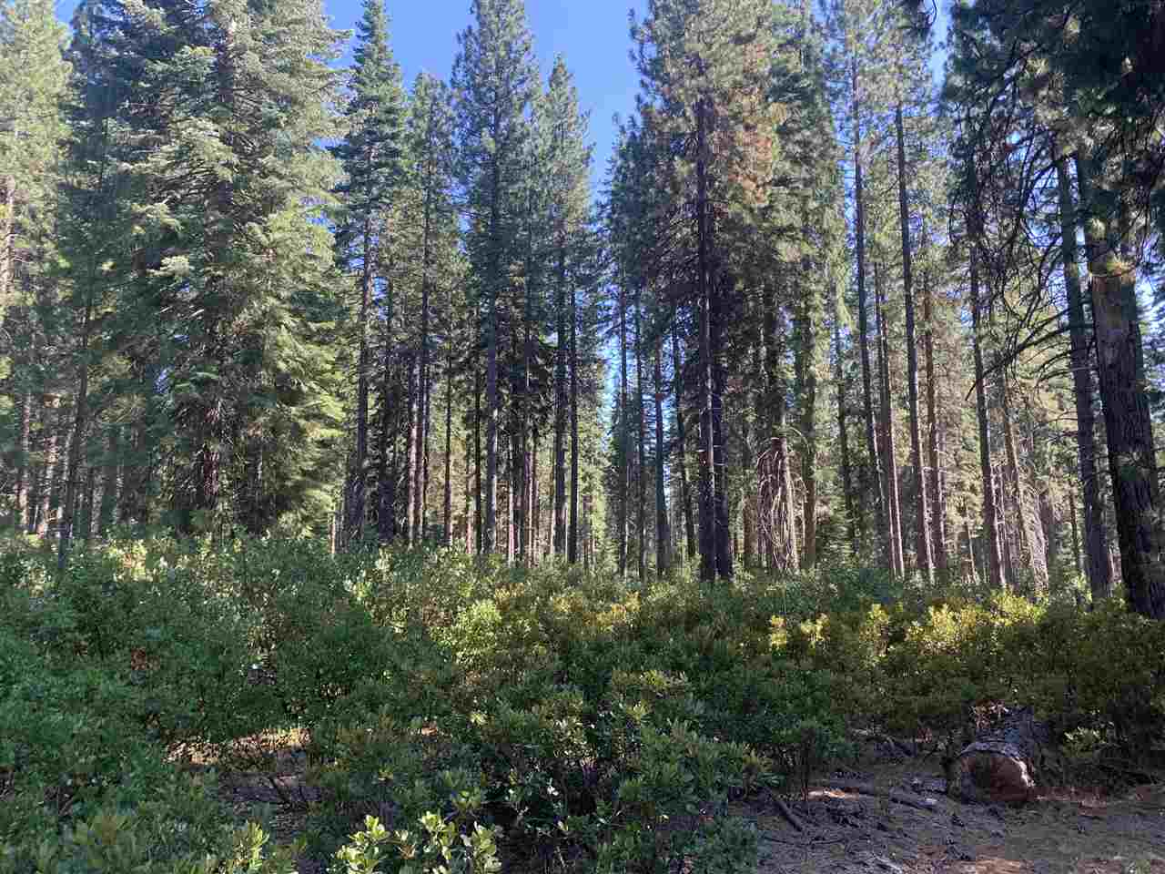 4.63ac Medicine Lake Road, McCloud, California 96057, ,Lots And Land,For Sale,4.63ac Medicine Lake Road,20201151