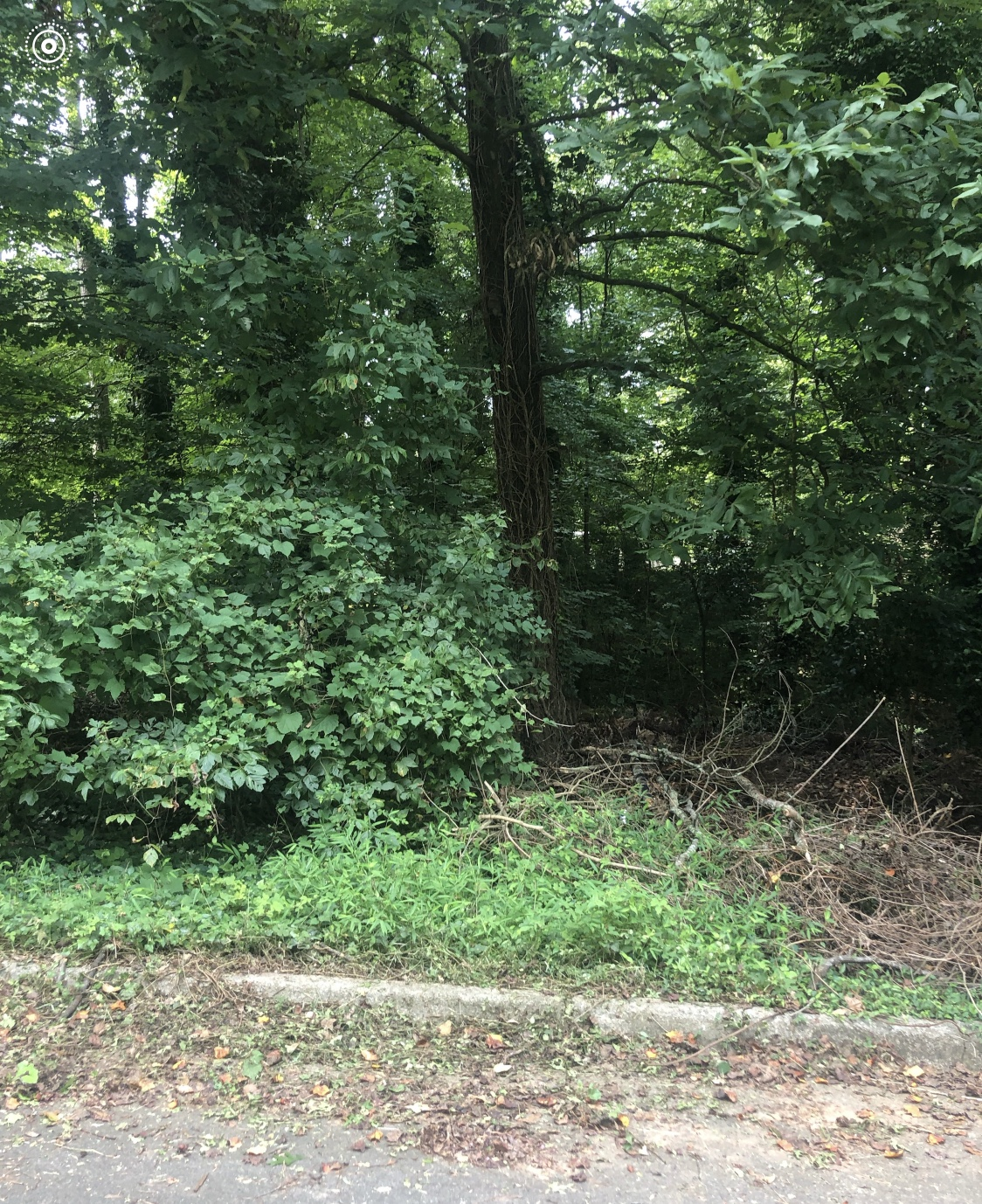 0 Fleetwood Circle, Atlanta, Georgia 30311, ,Lots And Land,For Sale,0 Fleetwood Circle,6770649