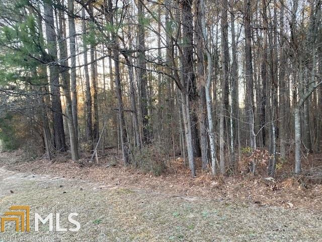 0 Fayetteville Road, Atlanta, Georgia 30349, ,Lots And Land,For Sale,0 Fayetteville Road,8850944