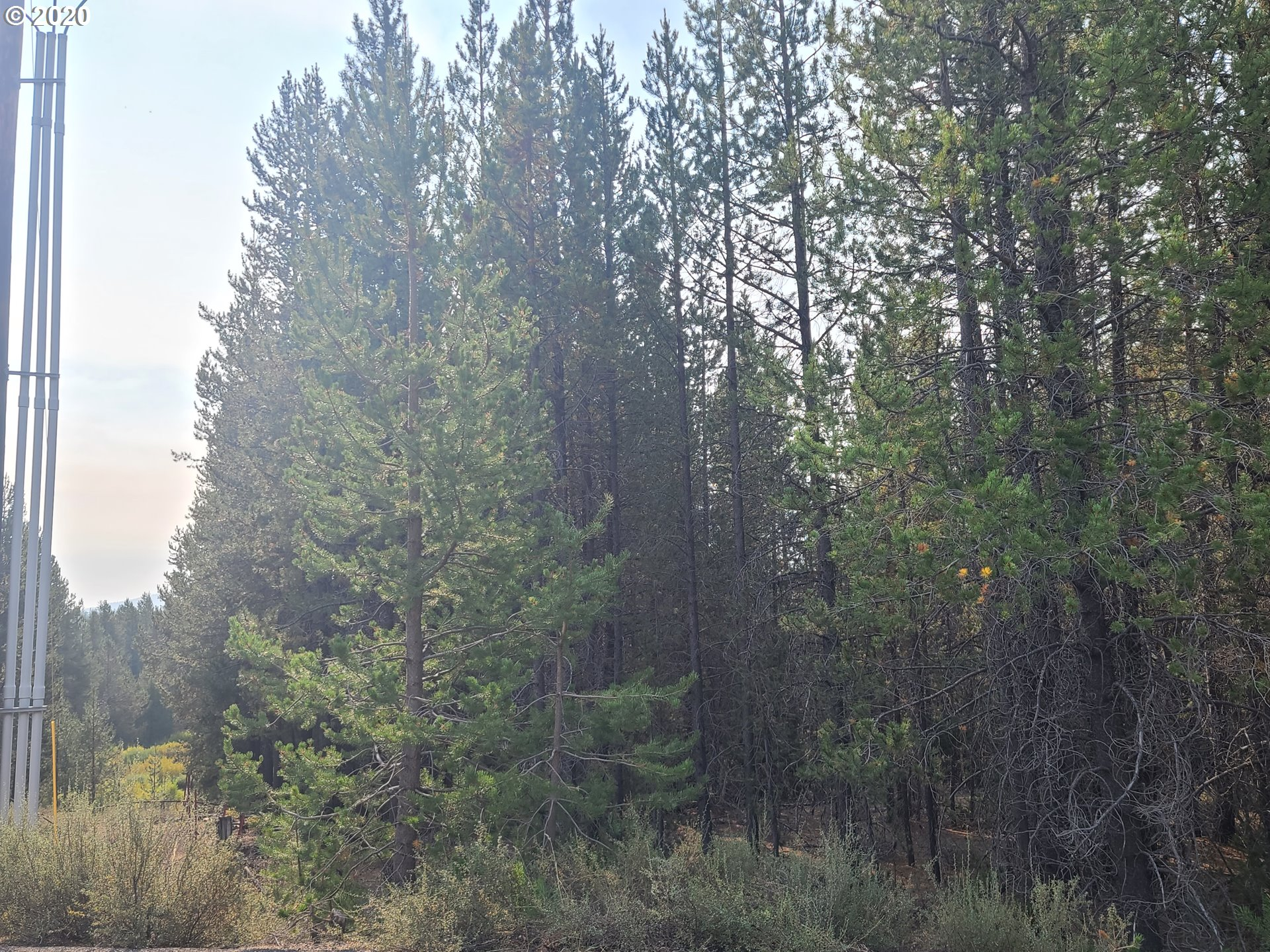 Two Rivers RD, Crescent Lake, Oregon 97733, ,Lots And Land,For Sale,Two Rivers RD,20069159