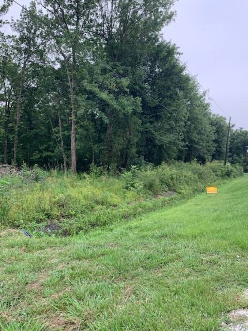 1005 Red Cypress Road, Patterson, Louisiana 70392, ,Lots And Land,For Sale,1005 Red Cypress Road,10620441