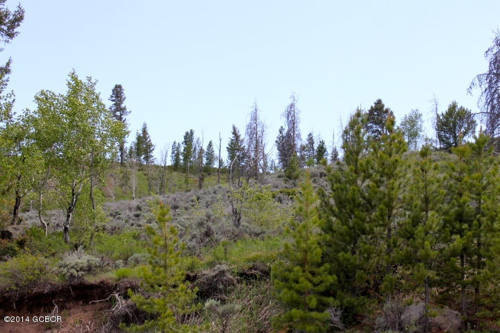 TBD, Hot Sulphur Springs, Colorado 80451, ,Lots And Land,For Sale,TBD,20-1310