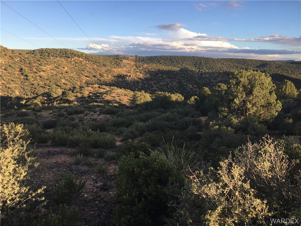 Lot 135 Velvet Antler, Kingman, Arizona 86401, ,Lots And Land,For Sale,Lot 135 Velvet Antler,941394