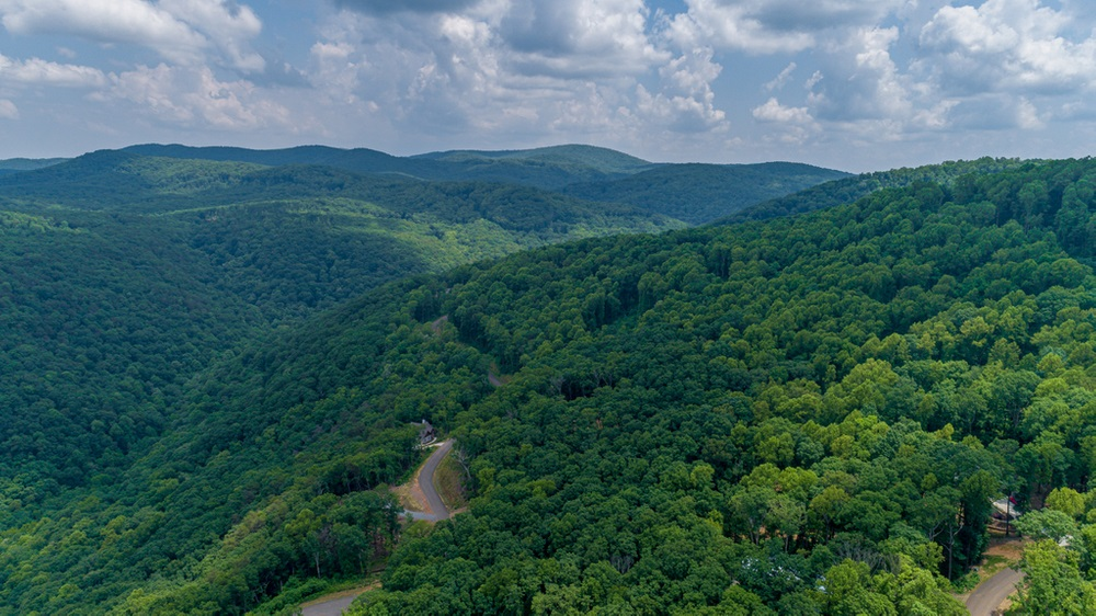 0 Andes Ridge, Ellijay, Georgia 30536, ,Lots And Land,For Sale,0 Andes Ridge,8863672