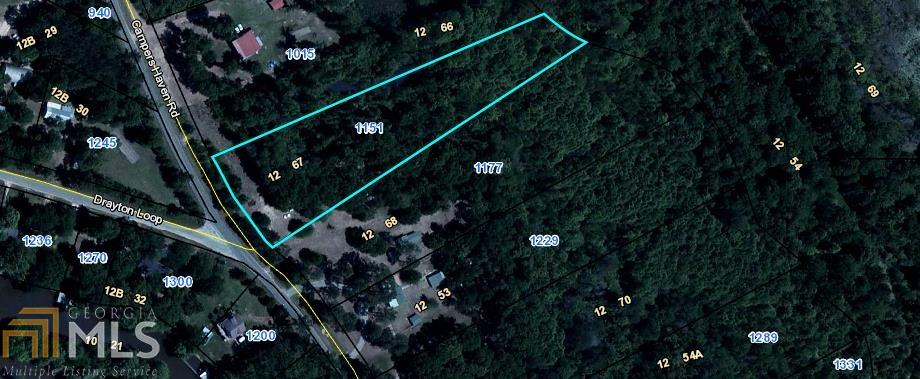 1151 Campers Haven Rd, VIENNA, Georgia 31092, ,Lots And Land,For Sale,1151 Campers Haven Rd,8860634