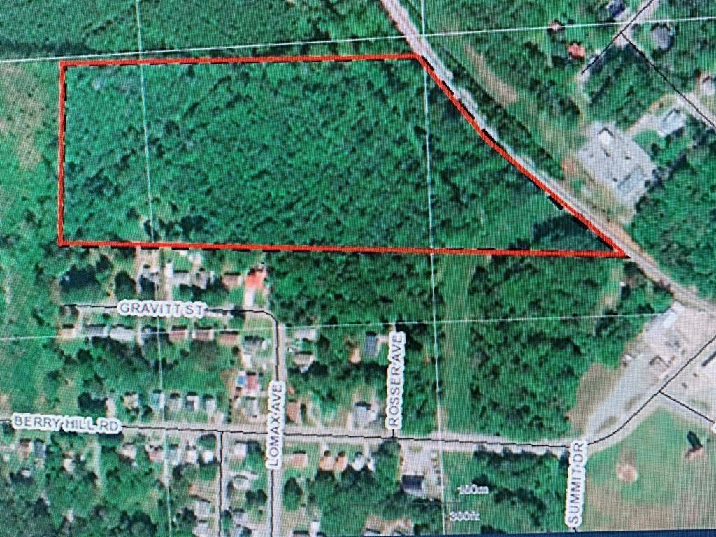 Berry Hill Road, South Boston, Virginia 24592, ,Lots And Land,For Sale,Berry Hill Road,63891