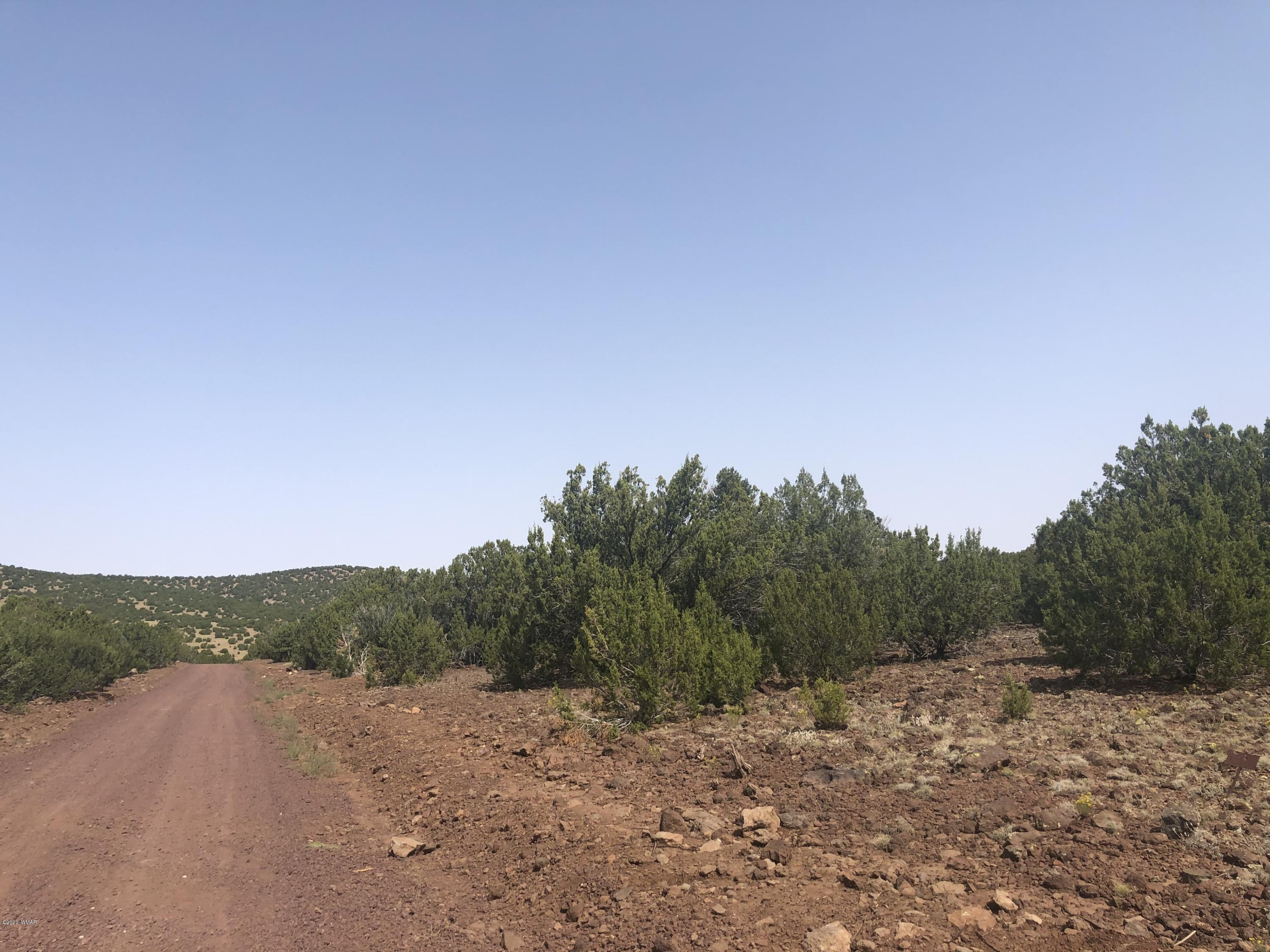 lot 141, Vernon, Arizona 85940, ,Lots And Land,For Sale,lot 141,231886