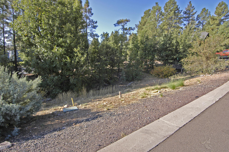 2621 S Marshalls Run, Show Low, Arizona 85901, ,Lots And Land,For Sale,2621 S Marshalls Run,231998