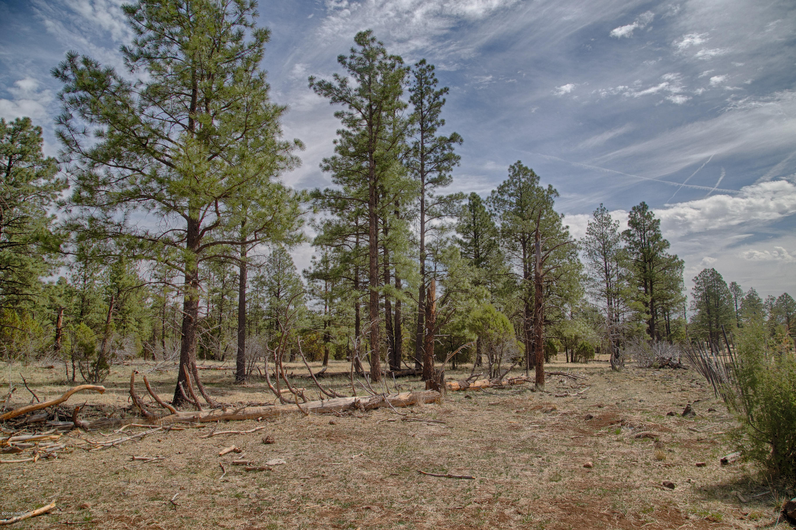 TBD W Coyote Drive, Lakeside, Arizona 85929, ,Lots And Land,For Sale,TBD W Coyote Drive,231978
