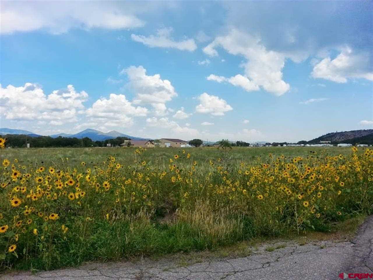 tbd Shoshone Trail, South Fork, Colorado 81154, ,Lots And Land,For Sale,tbd Shoshone Trail,774884