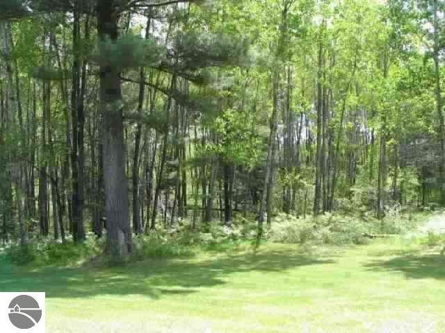 0 WHITE PINE DRIVE, Cadillac, Michigan 49601, ,Lots And Land,For Sale,0 WHITE PINE DRIVE,1879957