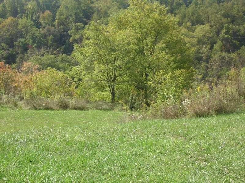 Lot 134 Dominion Heights, Upper St. Clair, Pennsylvania 15241, ,Single Family,For Sale,Lot 134 Dominion Heights,1471209