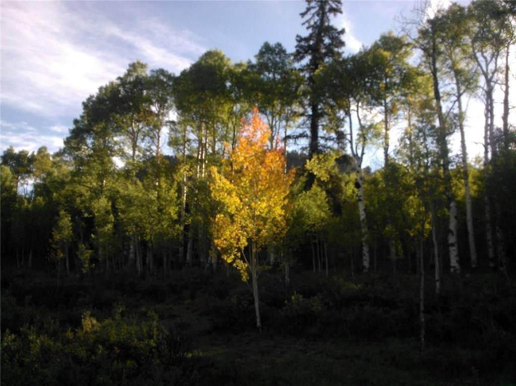 940 OURAY TRAIL, Jefferson, Colorado 80432, ,Lots And Land,For Sale,940 OURAY TRAIL,S1022697