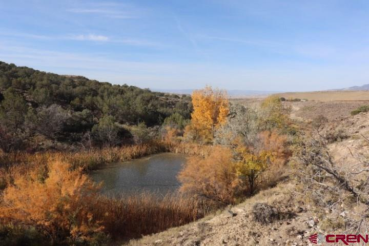 TBD 2600 Road, Hotchkiss, Colorado 81419, ,Lots And Land,For Sale,TBD 2600 Road,775891