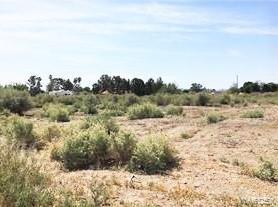 00 Pecan Lane, Mohave Valley, Arizona 86440, ,Lots And Land,For Sale,00 Pecan Lane,974719