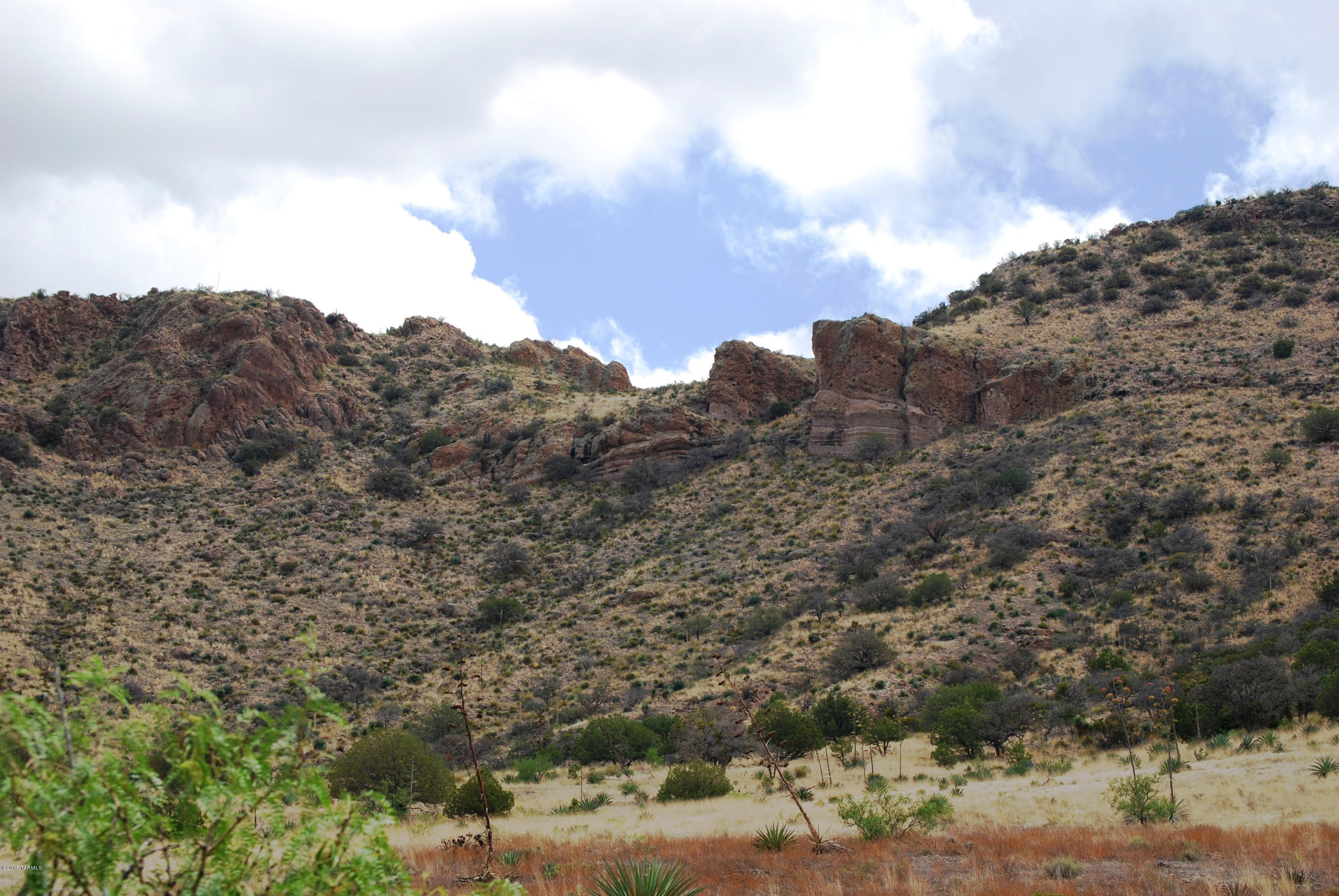 Pinery Canyon Road, Willcox, Arizona 85643, ,Lots And Land,For Sale,Pinery Canyon Road,22026373