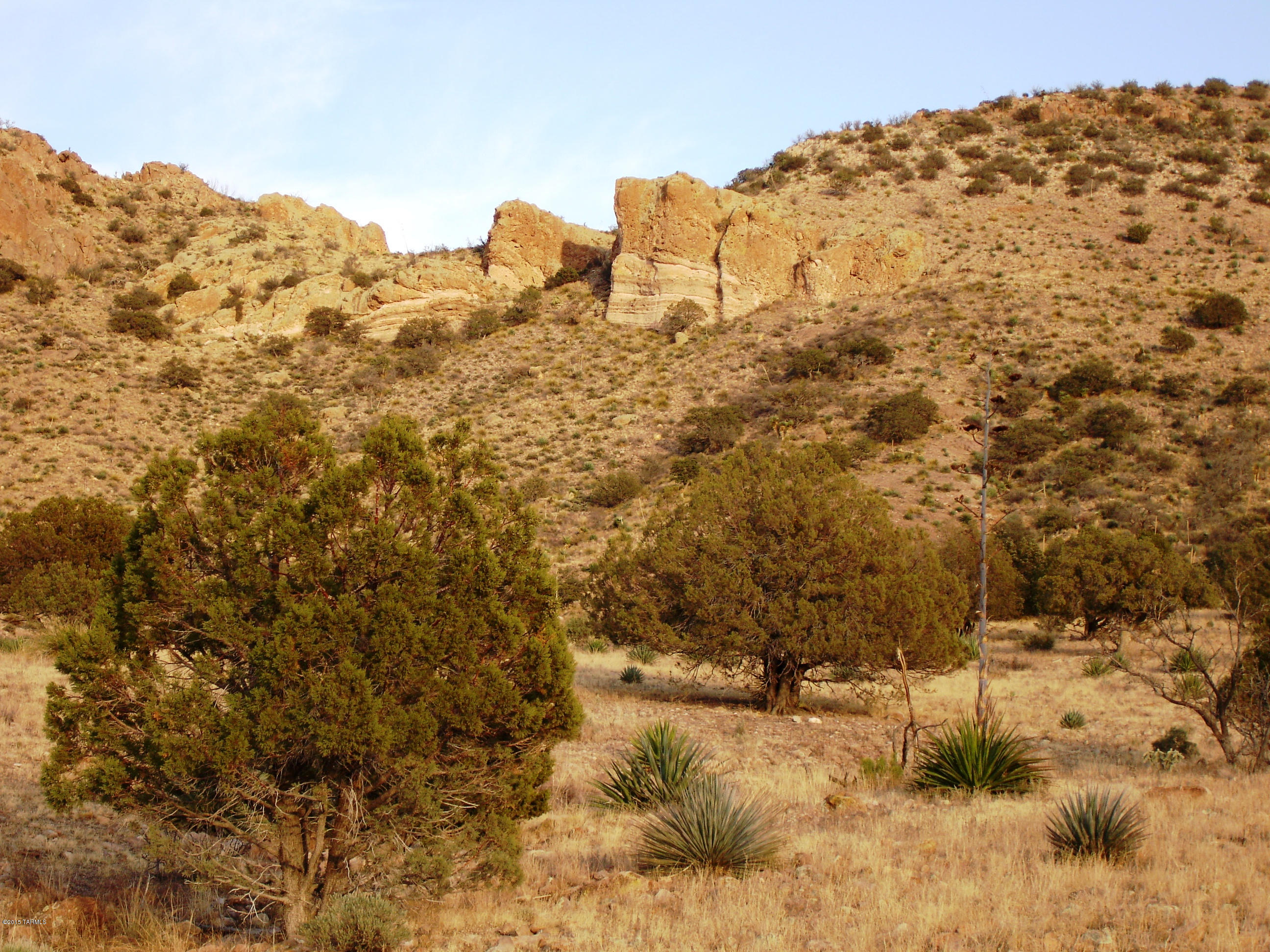 Pinery Canyon Road, Willcox, Arizona 85643, ,Lots And Land,For Sale,Pinery Canyon Road,22026493