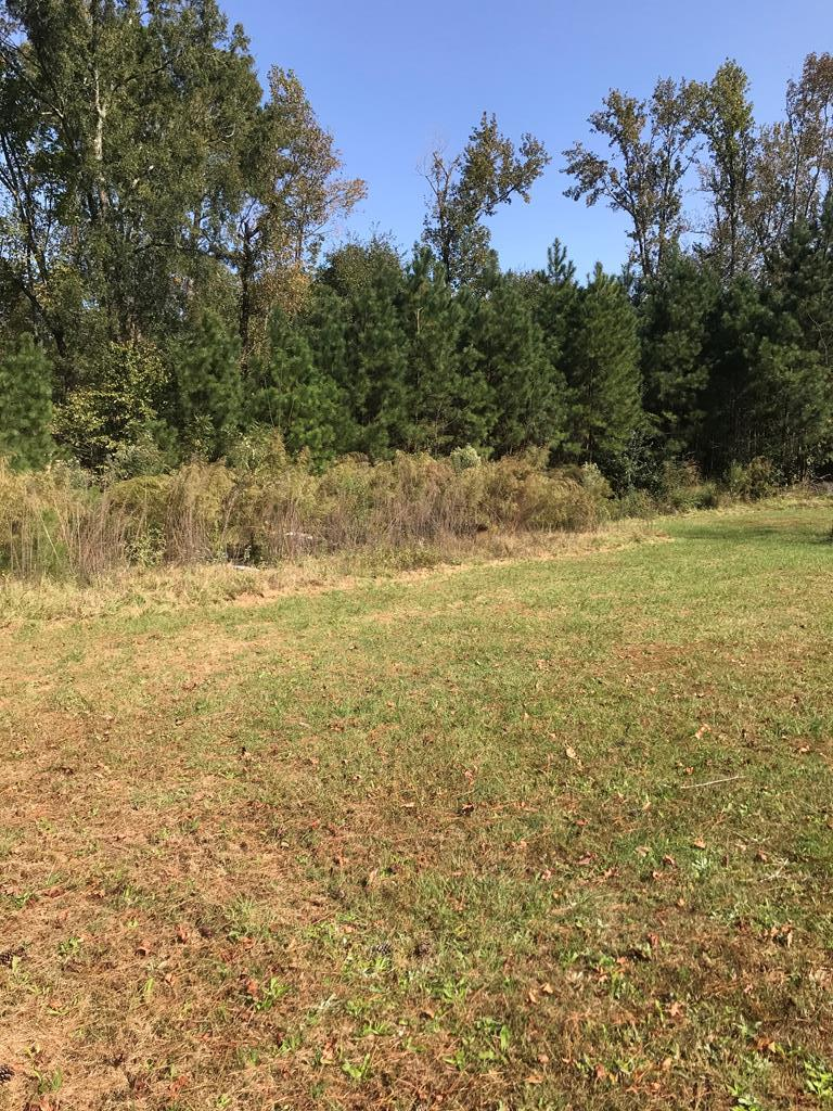 4869 Hereford Farm Road, Evans, Georgia 30809, ,Lots And Land,For Sale,4869 Hereford Farm Road,462490