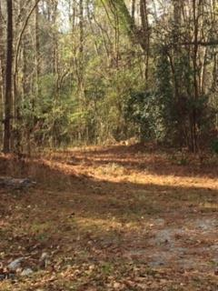 215 VFW Road, Grovetown, Georgia 30813, ,Lots And Land,For Sale,215 VFW Road,450337