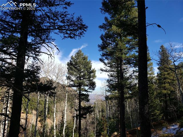 329 Waterfall Loop, Manitou Springs, Colorado 80829, ,Lots And Land,For Sale,329 Waterfall Loop,1566292