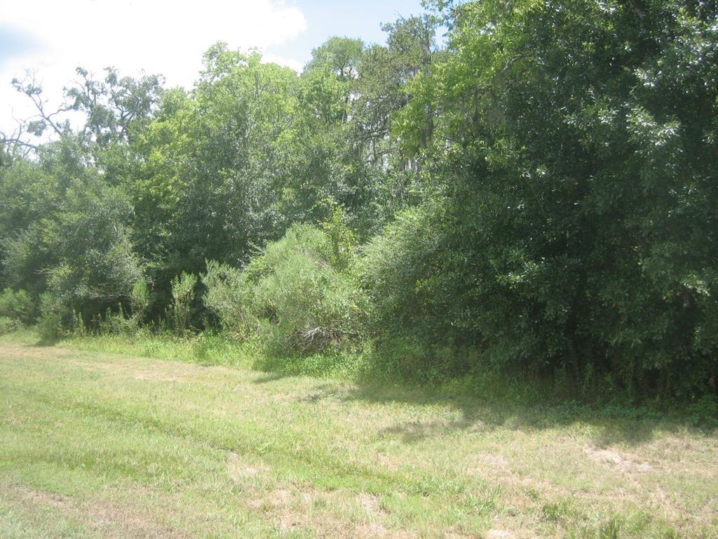407 Star Lake, Missouri City, Texas 77459, ,Lots And Land,For Sale,407 Star Lake,89881108