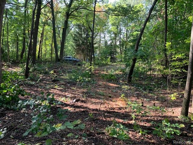 0000 FOSTER Road, Clarkston, Michigan 48346, ,Lots And Land,For Sale,0000 FOSTER Road,2200033696