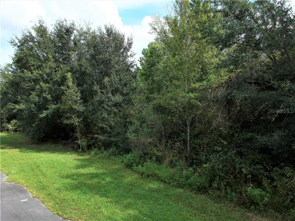 155 MILL GRANT ROAD, DeBary, Florida 32713, ,Lots And Land,For Sale,155 MILL GRANT ROAD,V4915502