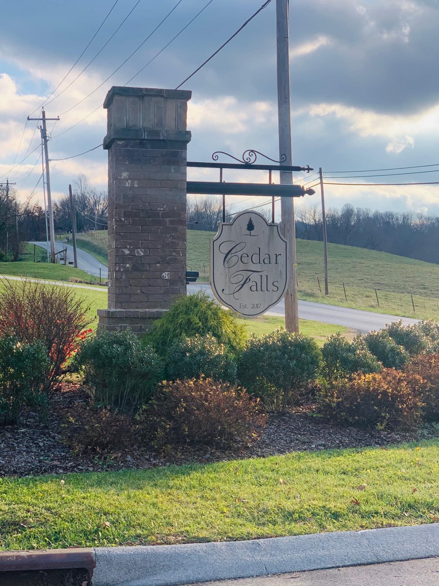 1058 Savin Falls, Johnson City, Tennessee 37615, ,Lots And Land,For Sale,1058 Savin Falls,9916242