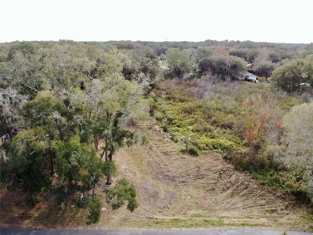 207 E LUTZ LAKE FERN ROAD, LUTZ, Florida 33549, ,Lots And Land,For Sale,207 E LUTZ LAKE FERN ROAD,T3282382