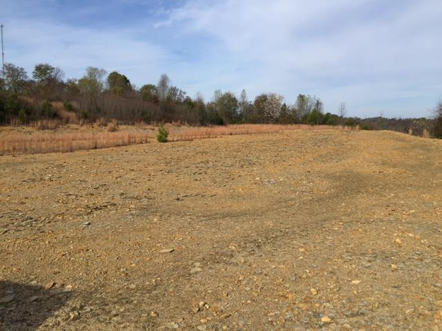 460 Wiskey Way, Pulaski, Tennessee 38478, ,Lots And Land,For Sale,460 Wiskey Way,2040452