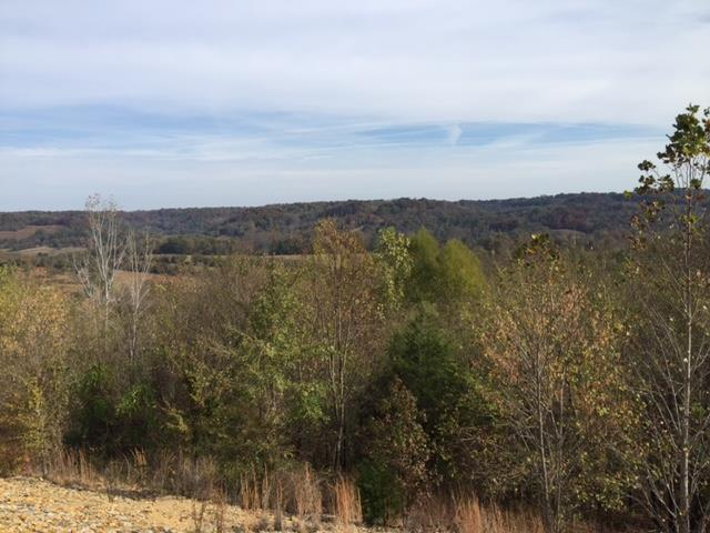 460 Wiskey Way, Pulaski, Tennessee 38478, ,Lots And Land,For Sale,460 Wiskey Way,2040466