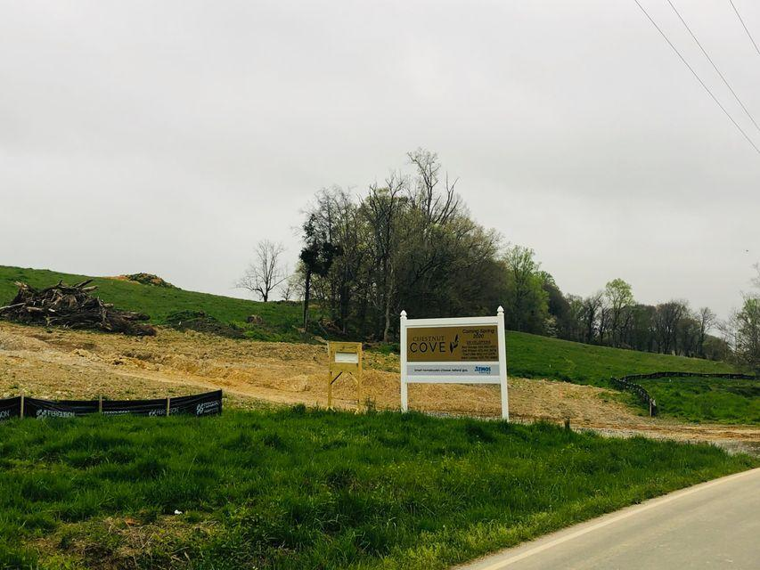 Tbd Boone Station Rd., Johnson City, Tennessee 37615, ,Lots And Land,For Sale,Tbd Boone Station Rd.,9916874