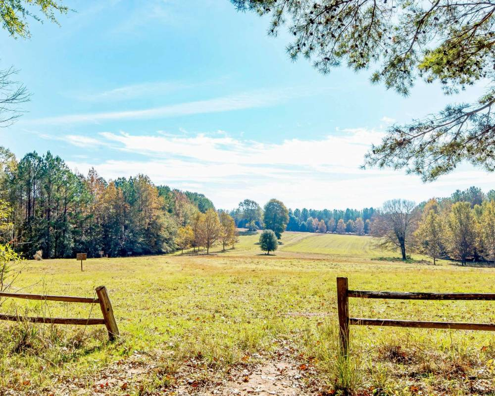 Luverne, Alabama 36049, 3 Bedrooms Bedrooms, ,1 BathroomBathrooms,Lots And Land,For Sale,10715