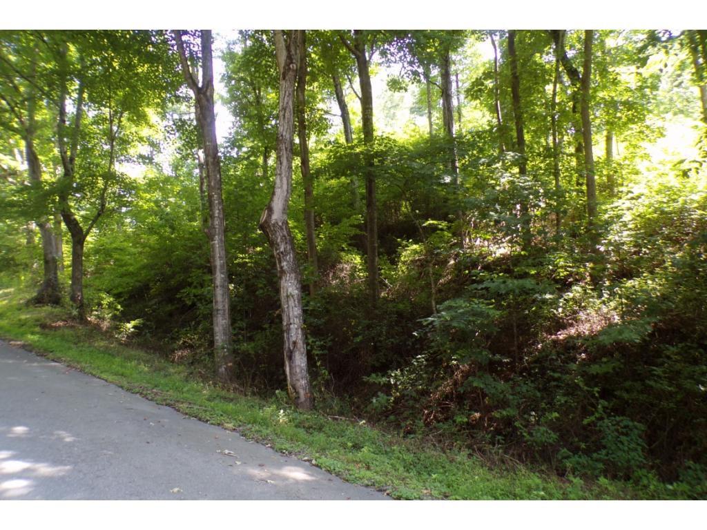 Tbd Buffalo Run Lot 1-A, Mountain City, Tennessee 37683, ,Lots And Land,For Sale,Tbd Buffalo Run Lot 1-A,9908119